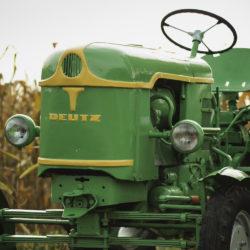 Deutz w kukurydzy-4